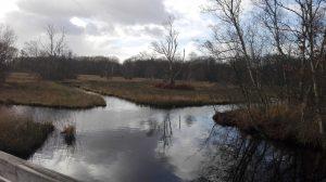 Wandelcoaching in de winter, effectief bij burnout en depressie