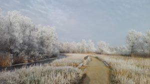 Winterse Wandelcoaching langs de Poel