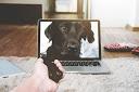 Online therapie via een beeldscherm tijdens de coronacrisis.